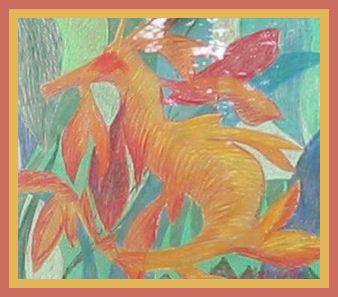 11. Pegasus Draco